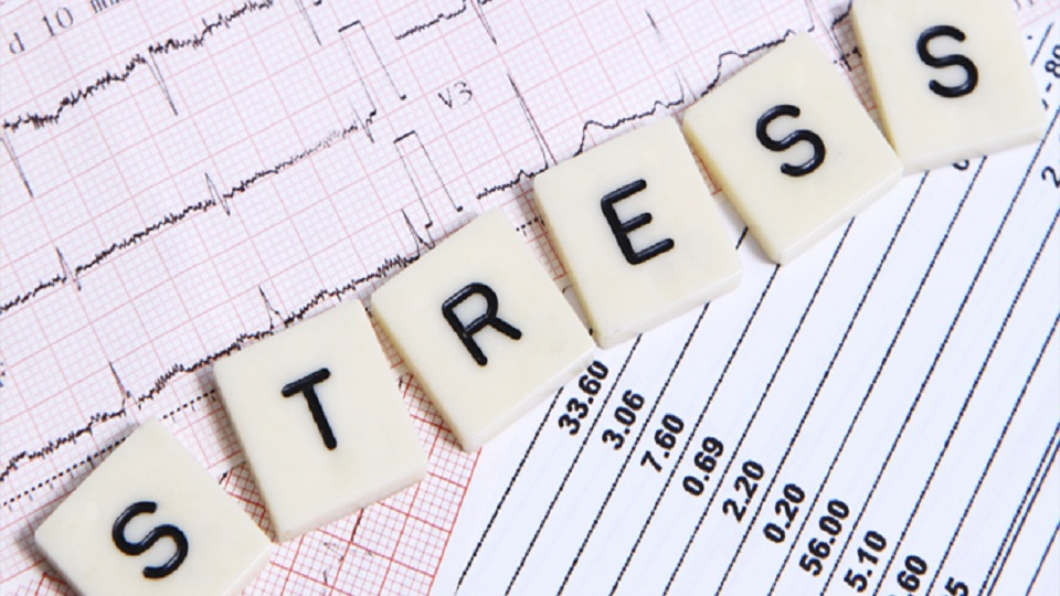 Identifying Symptoms Of Stress Is Vital: Chand