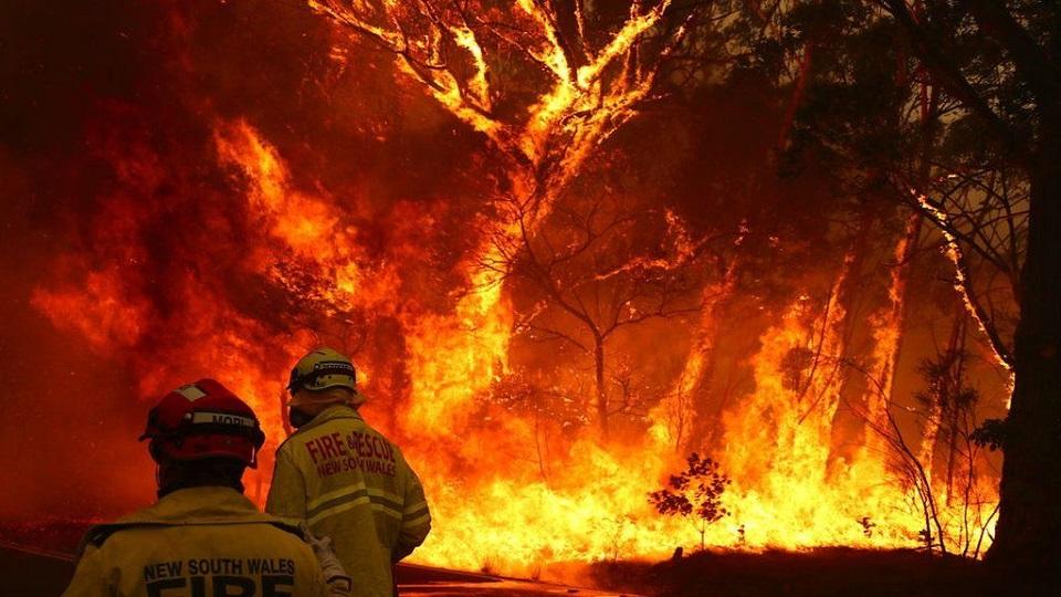 Australia Fires: The Huge Economic Cost Of Australia's